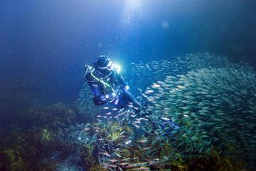 Private Full-Day Scuba Dive Charter...