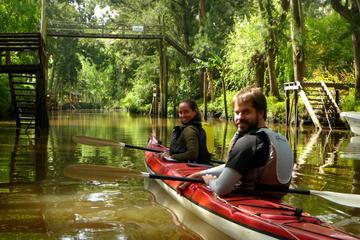 Half-Day Kayak Trip on the Parana River Delta