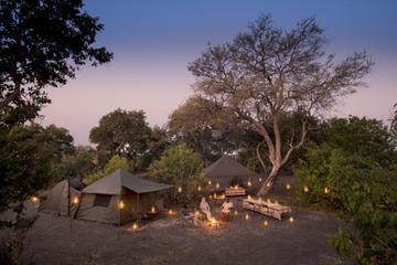 7-Day Mobile Camping Safari from Kasane