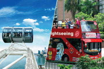 Singapore Flyer and Hop-On Hop-Off...