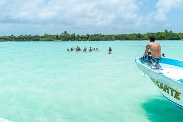 Full-Day Guided Sian Ka'an Biosphere Safari from Cancun