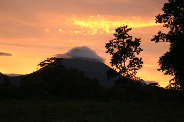 Private Arenal Volcano Hike and Tabacon Thermal Hot Springs with Dinner