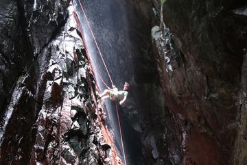 San Salvador Rainforest Ziplining and...