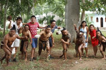 Maya Experience: Ek Balam and Mayan...