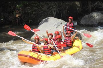 white water rafting, Cat coffee and Monkey forest ubud Tour