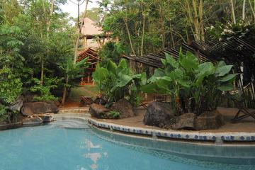 2-Night Yacutinga Lodge Rainforest Experience
