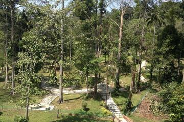 Full Day Batu Caves and Elephant Sanctuary Tour from Kuala Lumpur