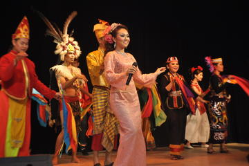 Malaysia Cultural Dinner Show with Dinner and Short Night Tour