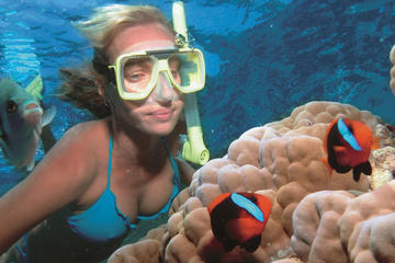 Wave Break Island Snorkel Tour on the...