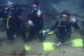 Day Trip Try SCUBA Diving in Crystal River (pool or springs) near Crystal River, Florida