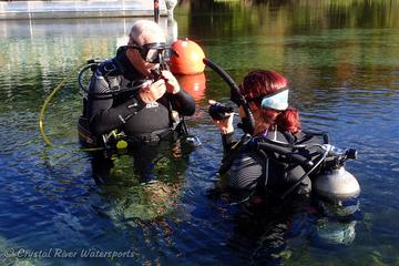 Try SCUBA Diving in Crystal River...