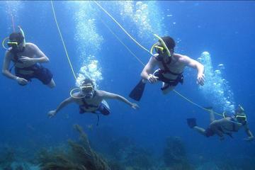 Platinum Power Shore Adventure, Hookah Diving, and Snorkeling