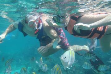 Platinum Snorkeling Catamaran Excursion with Open Bar