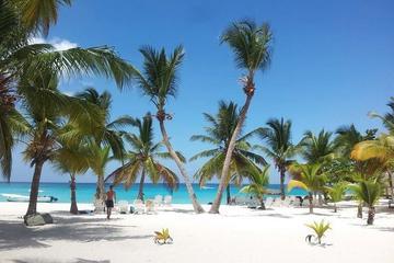 Saona Island Beach Day
