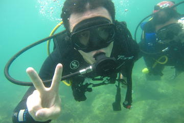 Scuba Diving Discovery Course at Hon...