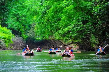 Khao Sok National Park and Canoe...