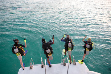 2-Tank Discover Scuba in ST Thomas with Optional Snorkeling