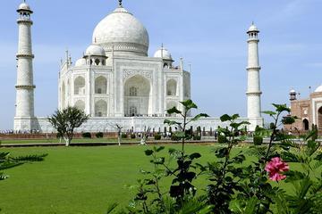 Taj Mahal Private Tour