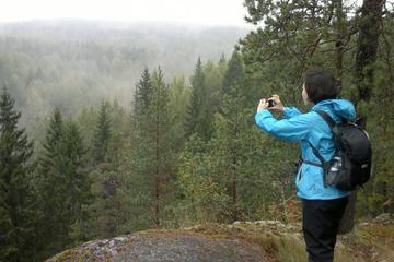 Half-Day Nature Adventure to Nuuksio...