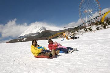 Hakone Cruise, Sledding, Gotemba...
