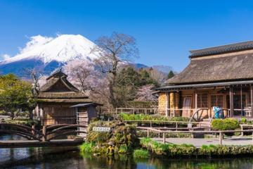 Mt. Fuji 5th Station Tour, Gotemba...