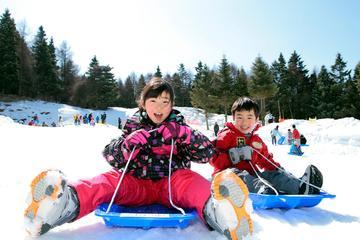 Ski Resort Sledding and…