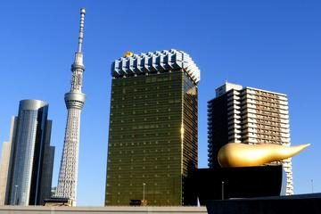 Private Custom Tokyo Tour