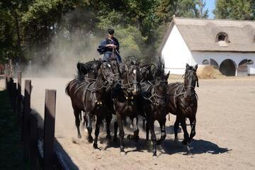 Kecskemét, Puszta Plains, and Horse Show Tour from Budapest