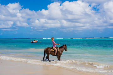Horseback Riding from Runaway Bay