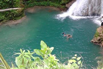 Private Blue Hole and Dunn's River...