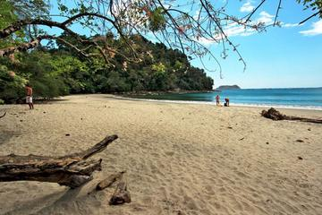 Day Trip to Manuel Antonio National Park from San Jose