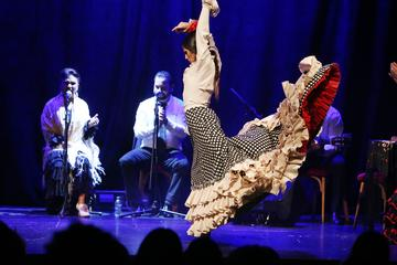 Flamenco Show at the City Hall in Barcelona