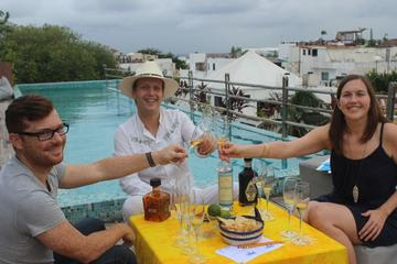 Professional Tequila Tasting at a Rooftop Terrace in Playa Del Carmen