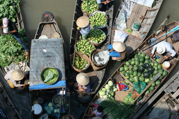 1-day Mekong Delta tour: Floating