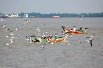 Half-Day Colors of Dhala Tour from Yangon