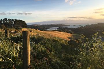 Waiheke Island Te Ara Hura 5-Day Walking Package