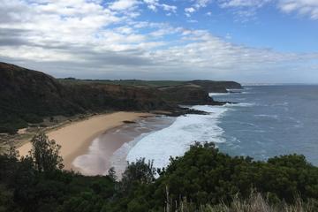 3 Day Phillip Island and Bass Coast Walking Holiday