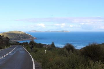 4 Day Wilsons Promontory Walking...