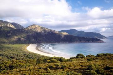 Wilsons Promontory Day Trip from Phillip Island