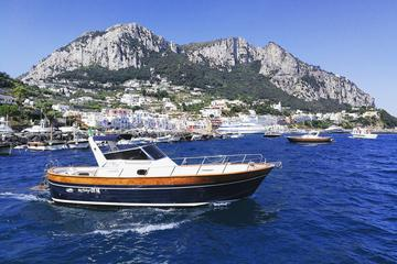 Private Island of Capri Boat Tour for...