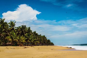 La Campagne Tropicana Private Beach ...