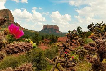 Sedona Day Trip from Phoenix