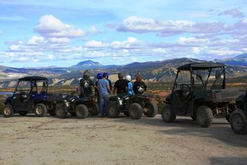 Denali National Park 2.5-Hour ATV...