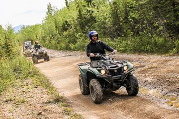 Denali 3.5-Hour ATV Off-Road Tour