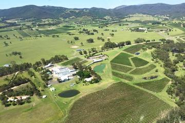 Helicopter Tour of Hunter Valley in