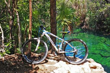 Cenote Trail Bike Tour in Tulum