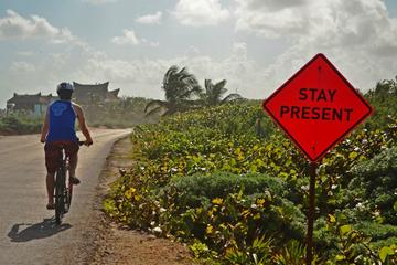 Tulum Insider's Bike Tour: Mayan Ruins, Caribbean Beach, Art and Food