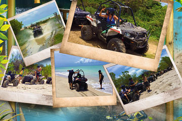 Jamwest Adventure Park All Access and Negril Tour