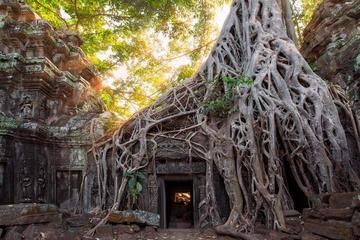 Tour of Banteay Kdei and Ta Prohm Including Khmer Massage and...