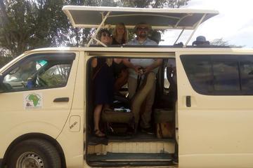 SAFARIS FROM MOMBASA TO TSAVO  AND AMBOSELI NATIONAL PARKS